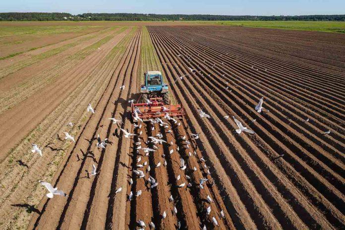 Agricultor conduciendo un tractor