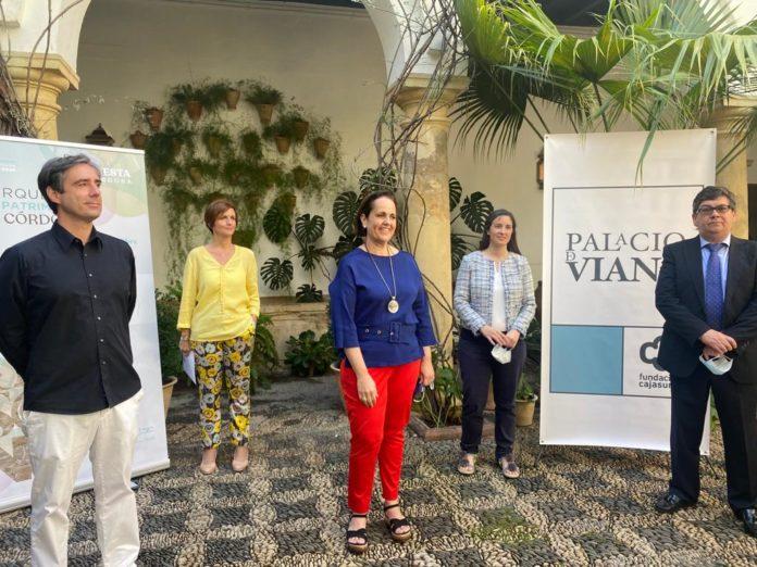 Foto Insitu-diario