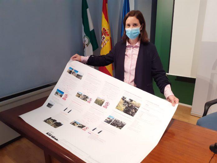 La delegada de Cultura y Patrimonio Histórico, Cristina Casanueva
