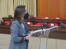 Isabel Ambrosio, tras la Junta de Gobierno