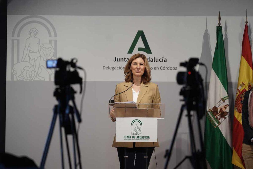 La secretaria general de Vivienda de la Junta, Alicia Martínez, presenta las ayudas. FOTO: RAM