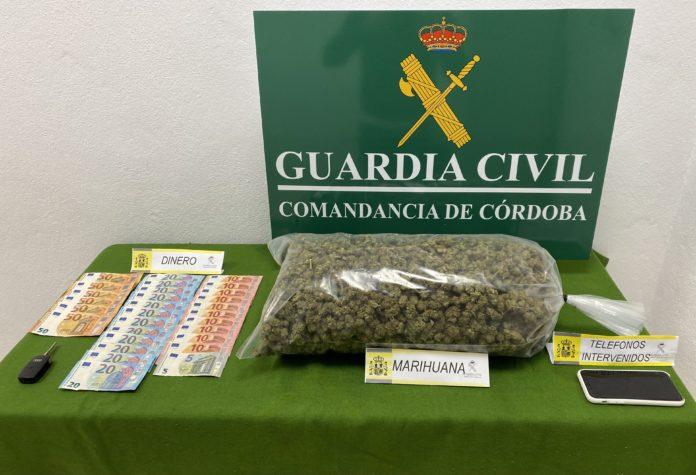 Marihuana Pozoblanco