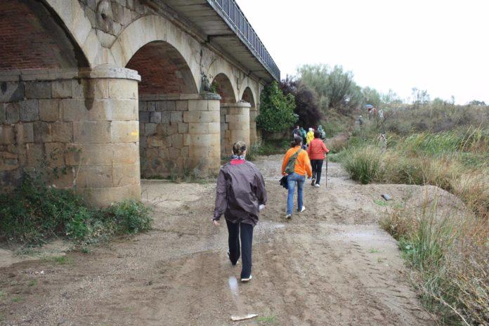 El Camino Mozárabe a Santiago