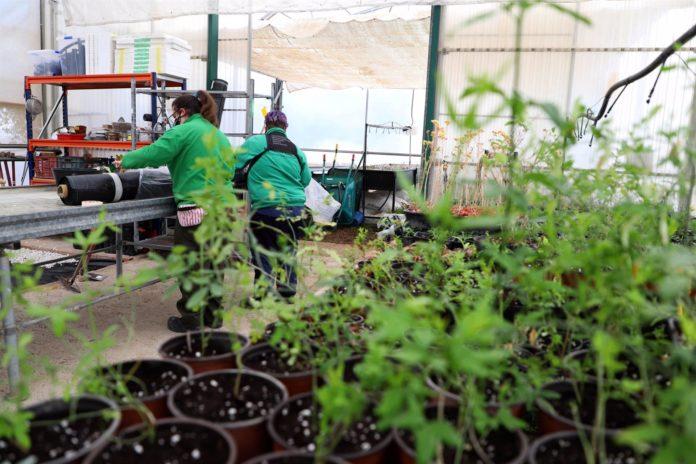 Una imagen del Centro Agropecuario Provincial