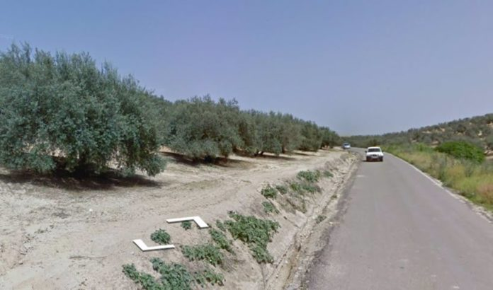 Carretera CO-3109 en Córdoba