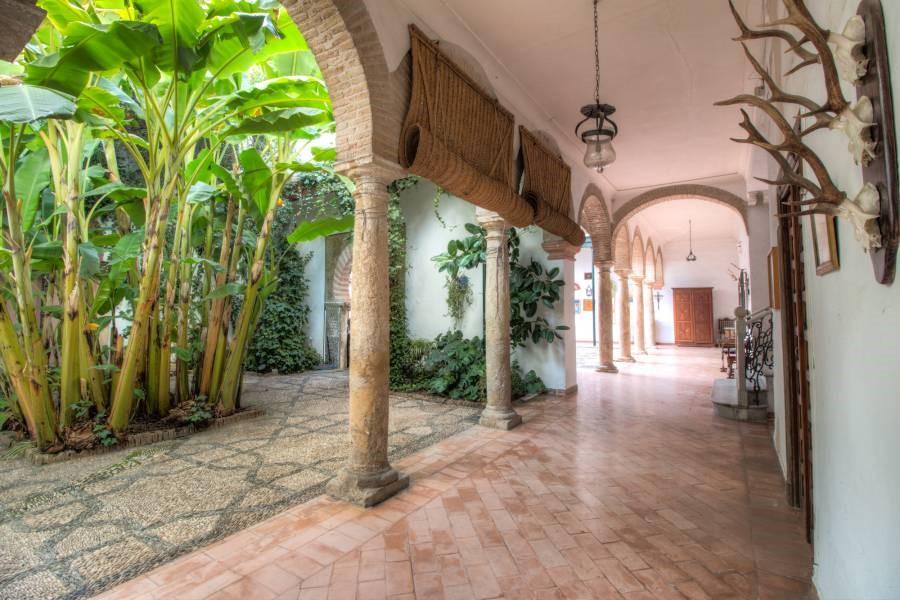Casa-palacio en la Judería de Córdoba