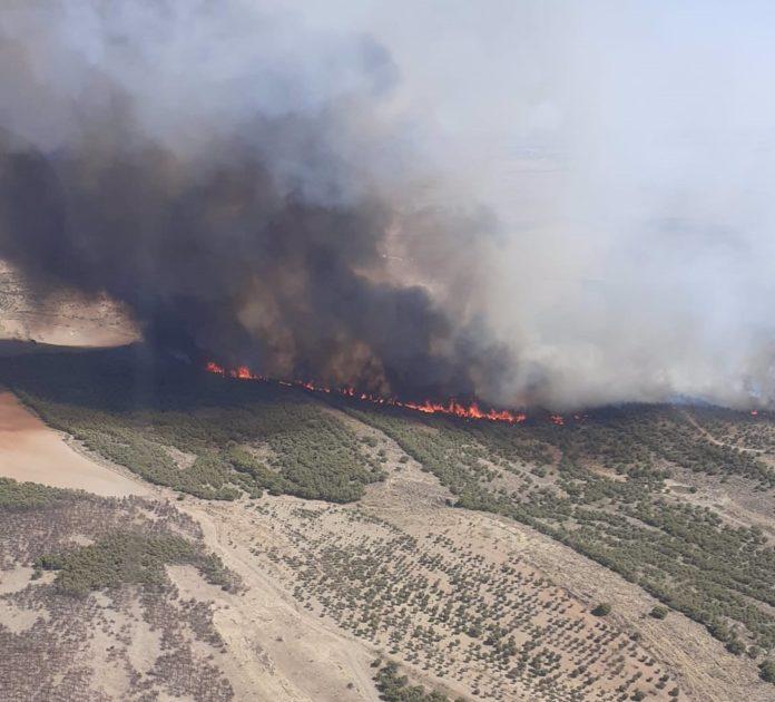 Imagen aérea del incendio forestal de Belalcázar