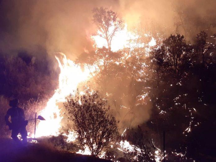 incendio declarado en Villaharta