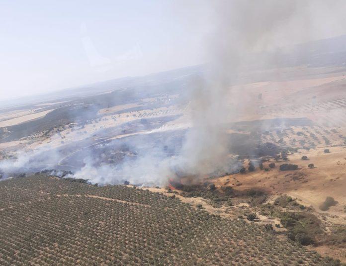Incendio forestal en un paraje de Guadalcázar