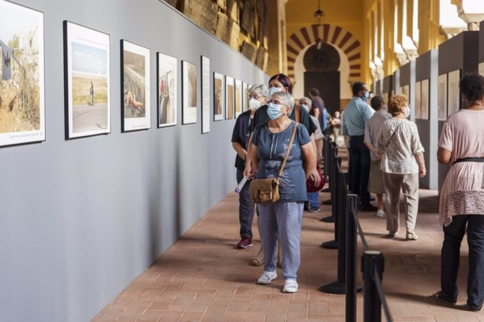 Visitantes de la exposición